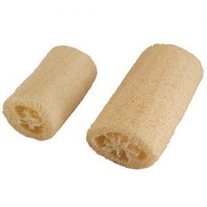 Loofah-Luffa-Luffa-Aegyptiaca-Seed-100-Seeds-Approx-by-Weight-251660378537-2